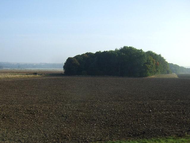 Farmland towards Clough Plantation