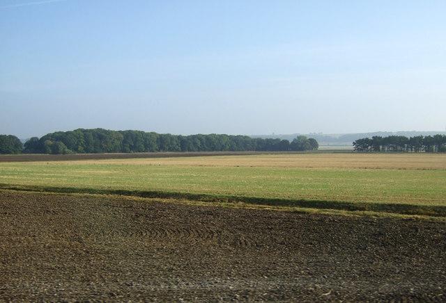 Farmland, Elsham Carrs