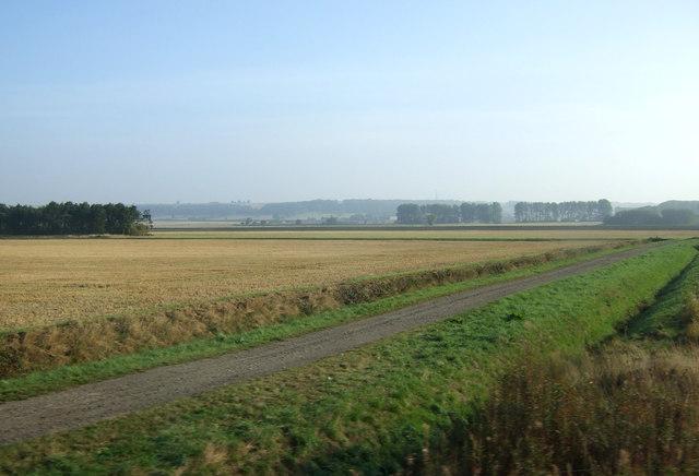 Farm track, Elsham Carrs