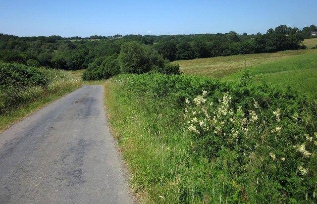 Town Moor Hill