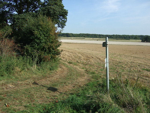 Footpath towards Mareham le Fen