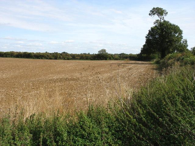 Farmland east of Rothwell