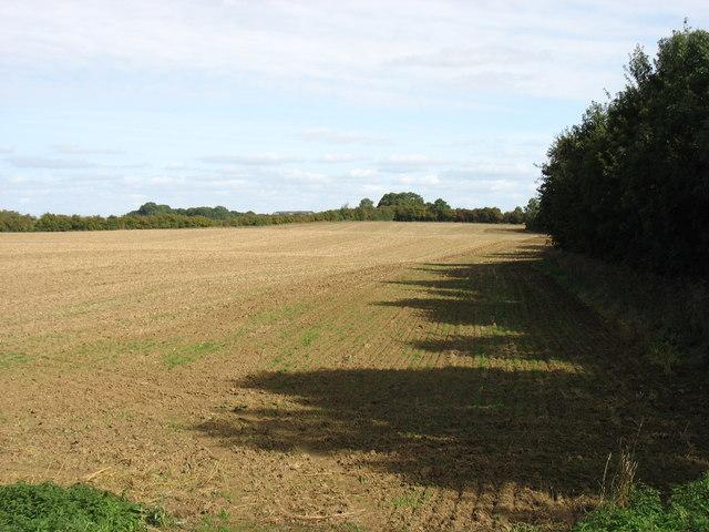 Farmland near Glendon Hall