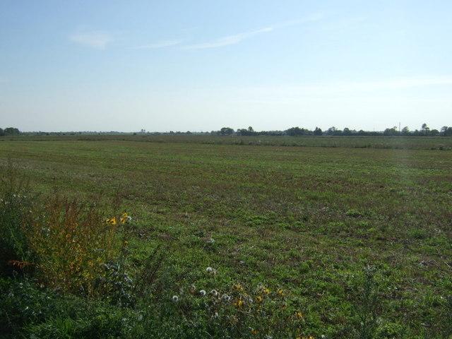 Farmland off Chapel Lane
