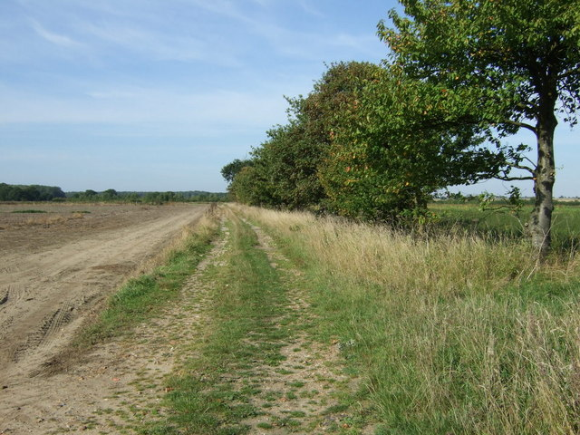 Farm track, Mareham Moor