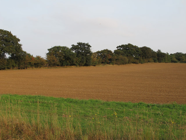 Arable land behind the coastal defences, Bradwell