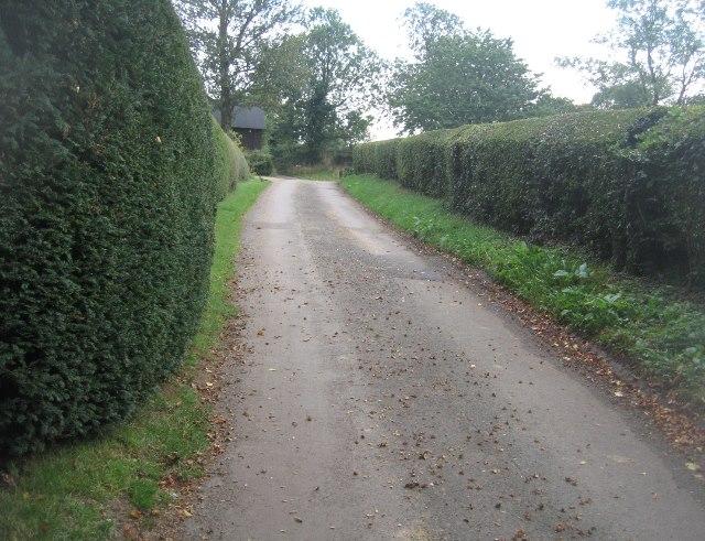 Lane from Balstone Farm