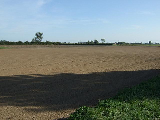 Farmland near Scrub Hill