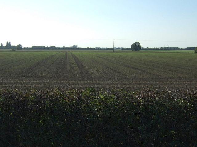 Farmland near Hundle Houses