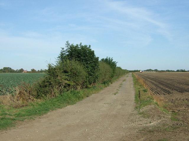 Farm track, Wildmore Fen