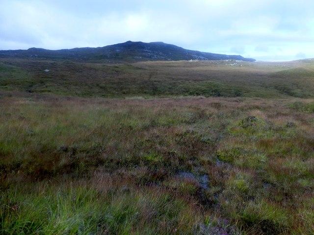 Moorland View Towards Corlabhadh