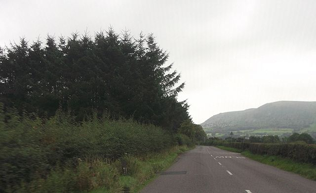 Approaching lane to Lower Stapeley