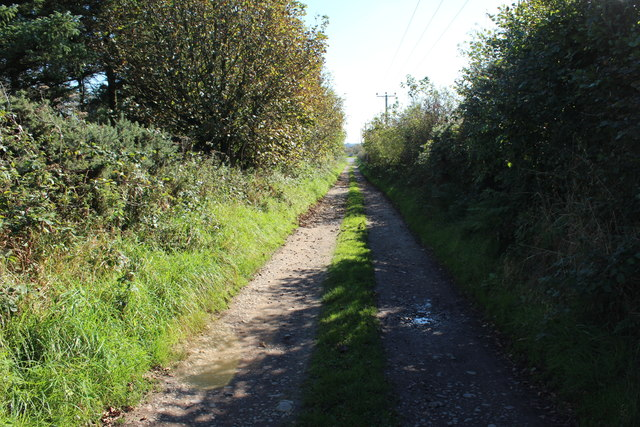 Track to Gallowhill Farm