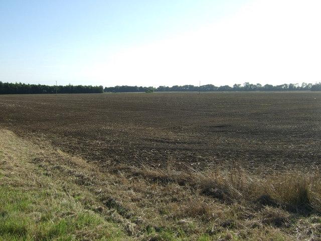 Farmland, Beech House Farm