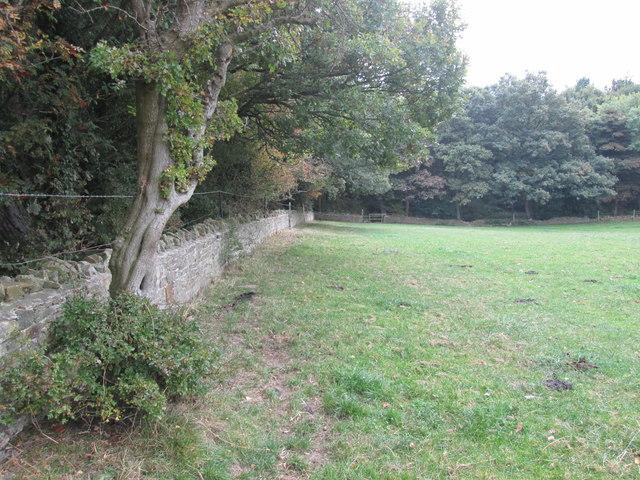 Barnsley Boundary Walk north of Hood Wood