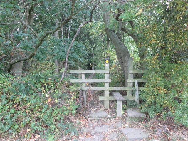Barnsley Boundary Walk south side of Hood Wood