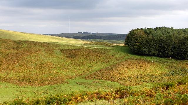Rough grazing above Essenside Loch