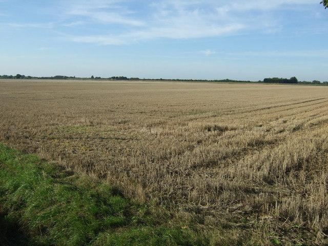 Farmland near Boston West