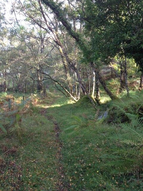 Path near Forsay Caravan Site