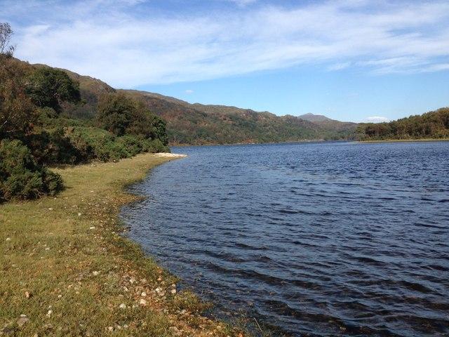 Shoreline of Loch Shiel