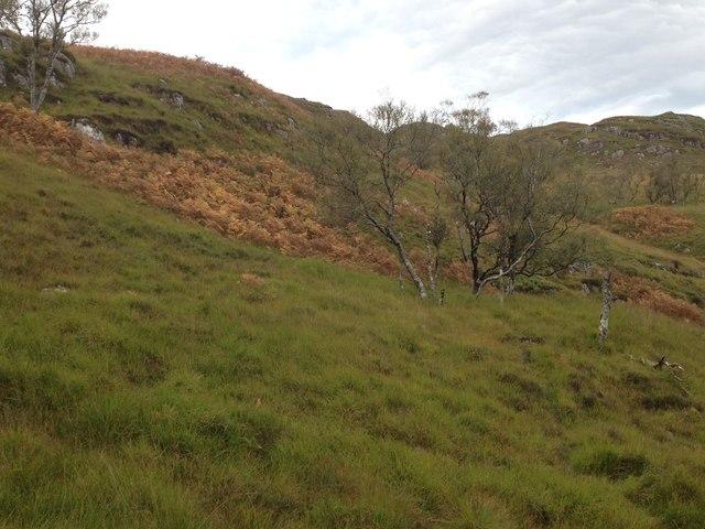 Slopes of Druim an Laoigh