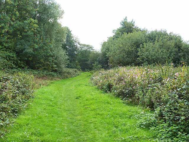 Millennium Trail through the Riverside Garden Park
