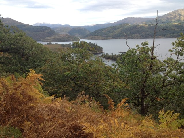 Steep wooded slopes above Loch Shiel