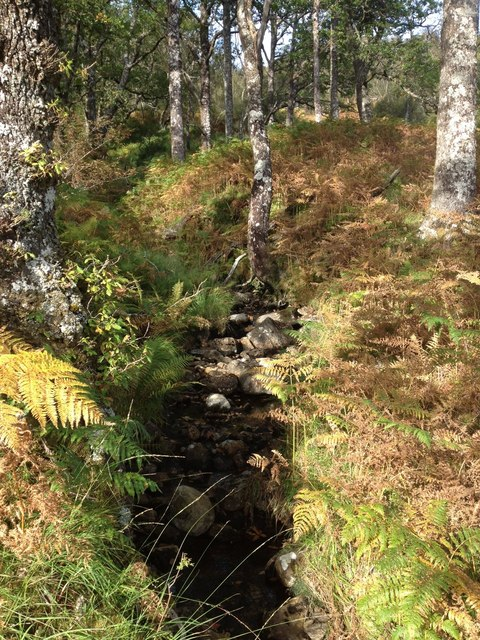 Small stream near Loch Shiel