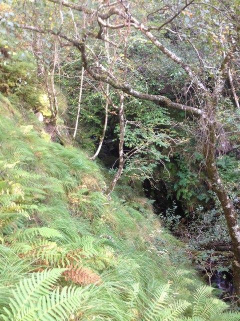 Stream running in a gorge near Alisary