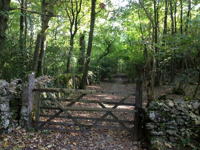 Gate in Eggerslack Wood