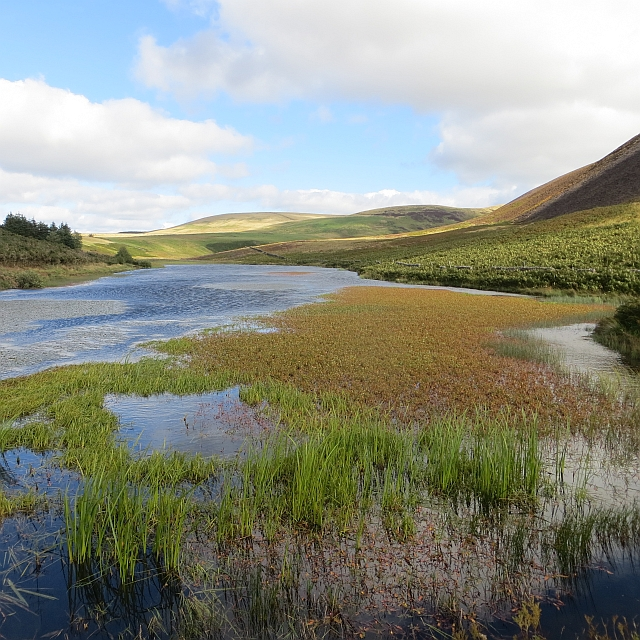 Threipmuir Reservoir - the upper bit