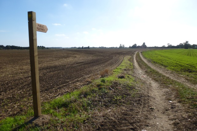 Footpath to the B1247