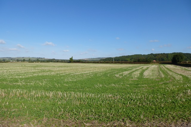 Farmland towards the Mile