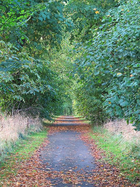 Track near Aberdour