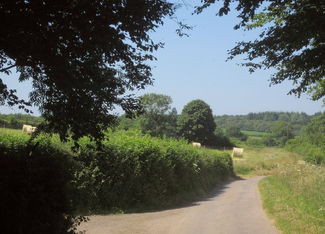Lane to Lutworthy