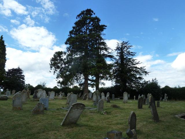 St Mary, Stalbridge: churchyard (2)