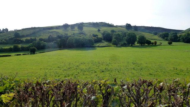 Hillside above Hopton Isaf