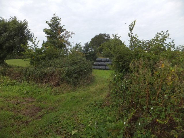Field entrance near Nunford Dairy