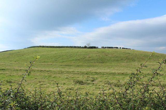 Farmland near Dalhowan
