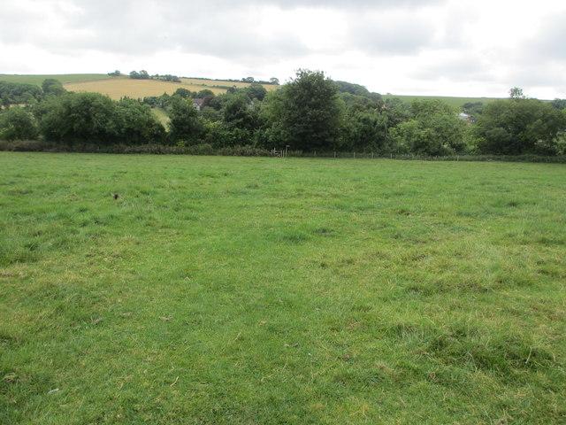 Path across grazing land to Wepham