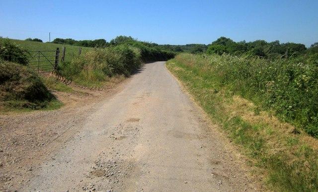 Lane past Cuddenhay Farm