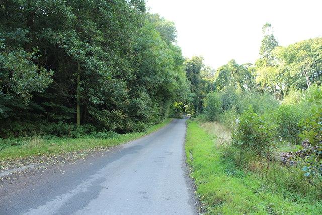 Road to Glentrool at Balsaggart