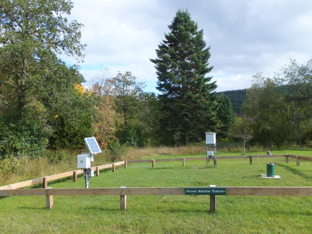Forest Weather Station