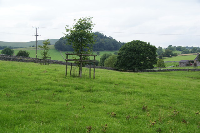 Green fields on the edge of Alstonefield
