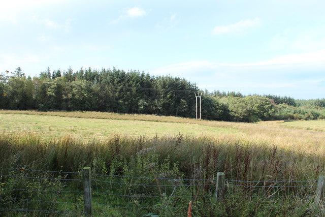 Farmland & Woodland near Cullochknowes