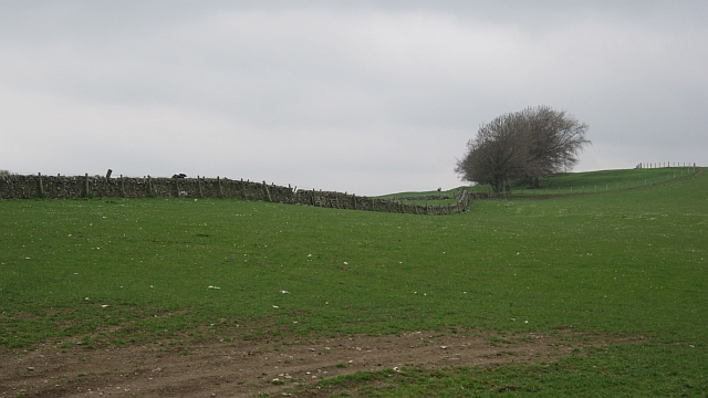 Selkirk Common