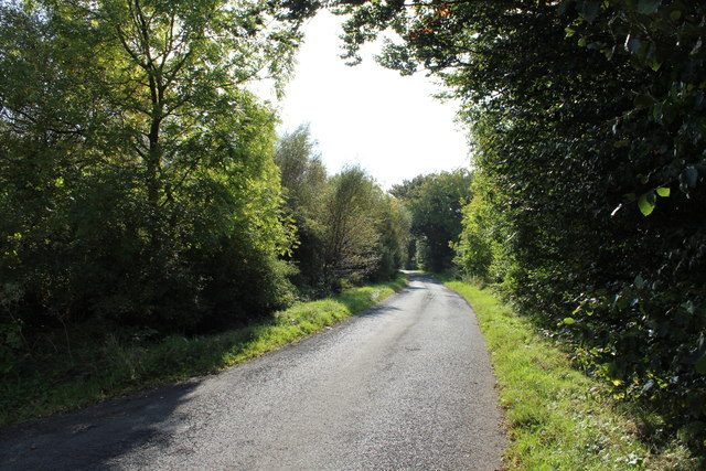 Road to Glentrool near Cullochknowes