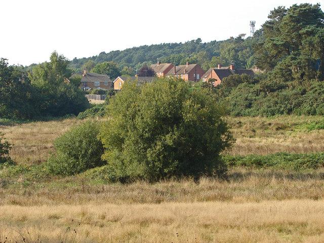 Fallow land near Broadmoor