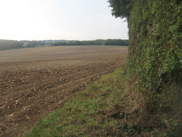 Fields west of Balstone Farm
