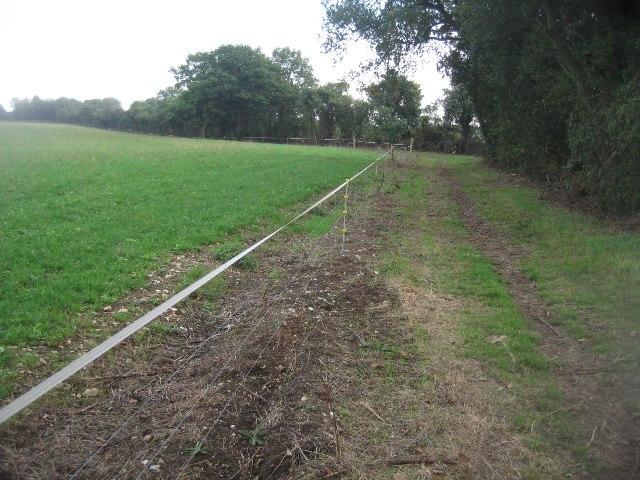Bridleway approaching Balstone Farm